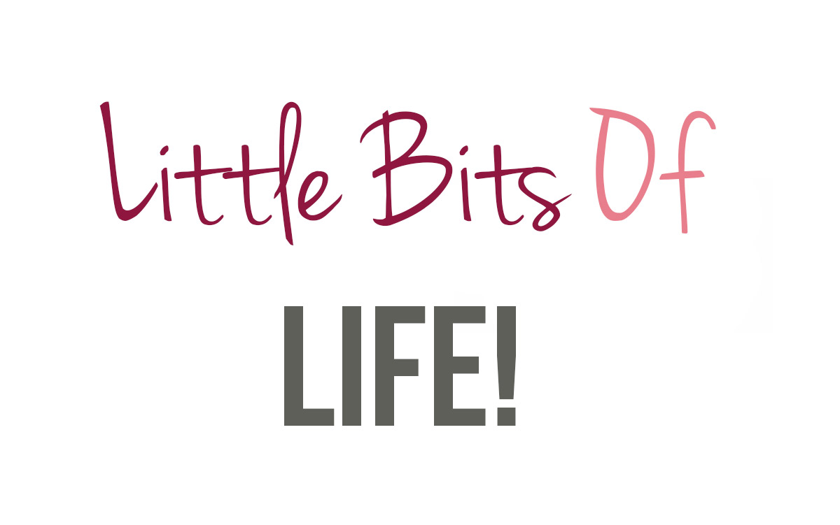 My Little Bits Of Life #4