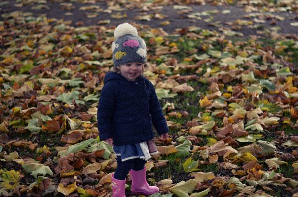 autumnwalk7
