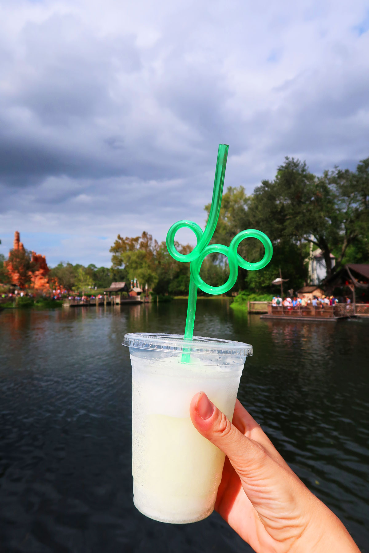Top 5 Disney Snacks you have to try at Walt Disney World