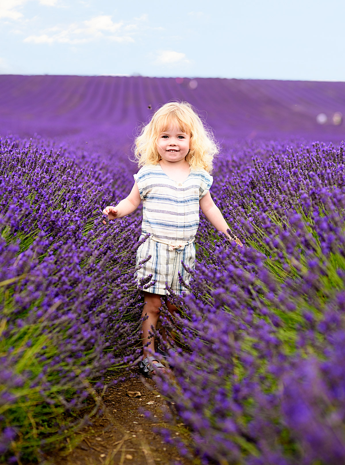 lavenderfields_15_e