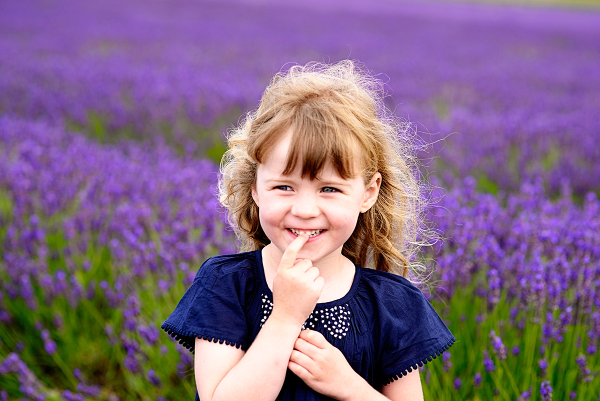 lavenderfields_15_g