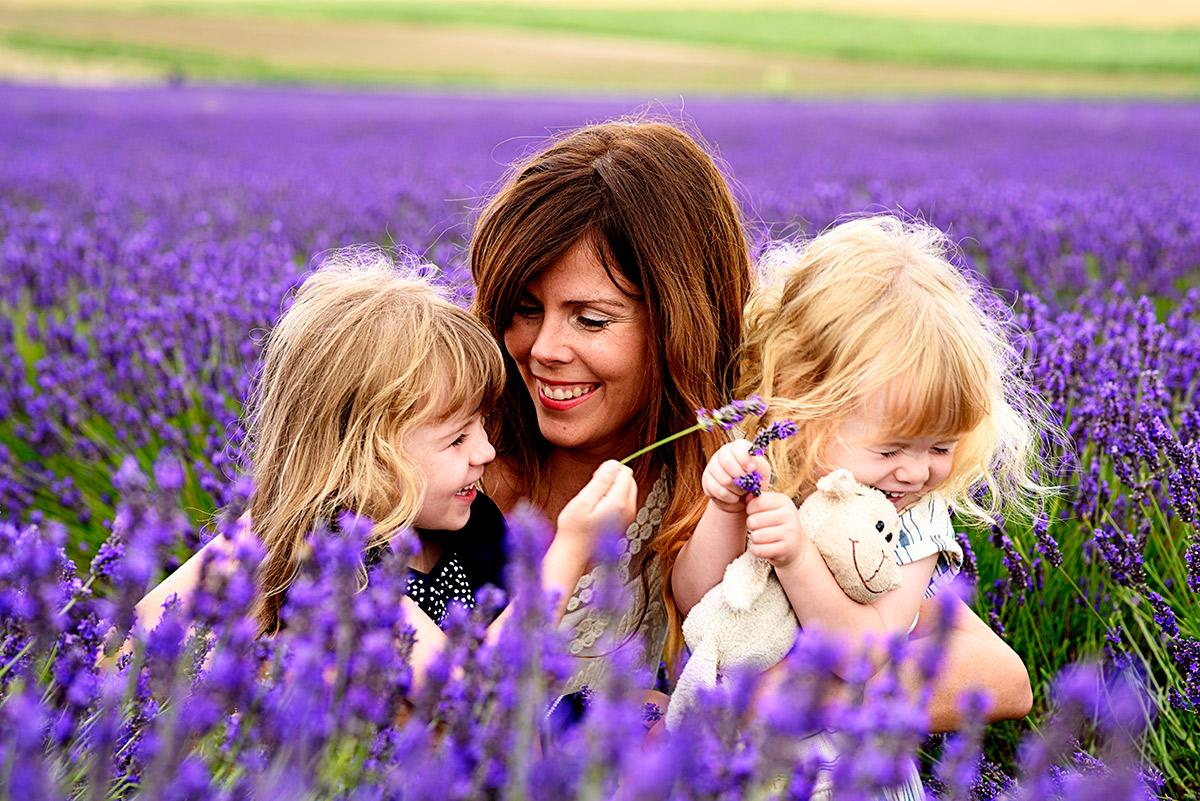 lavenderfields_15_l