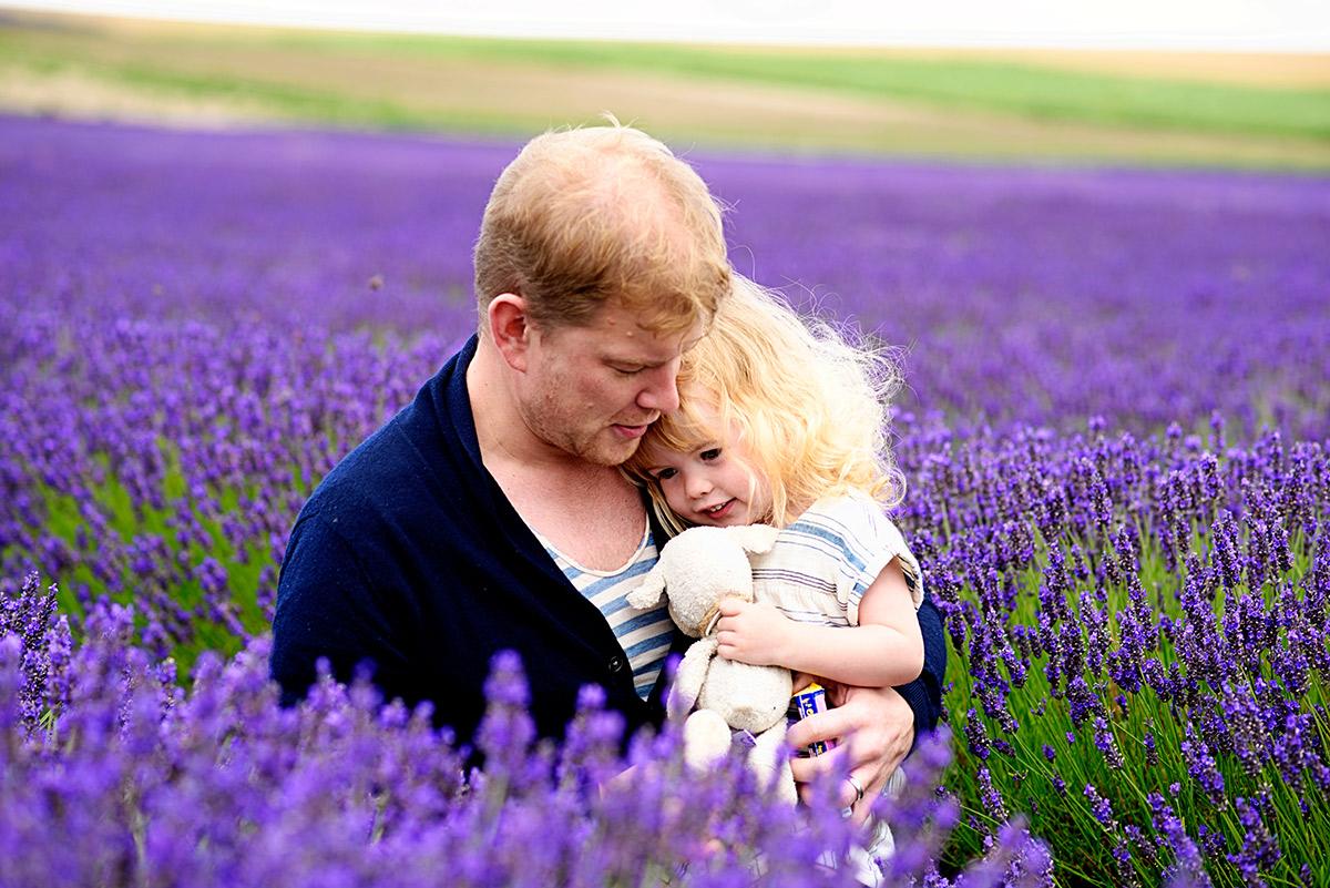 lavenderfields_15_n