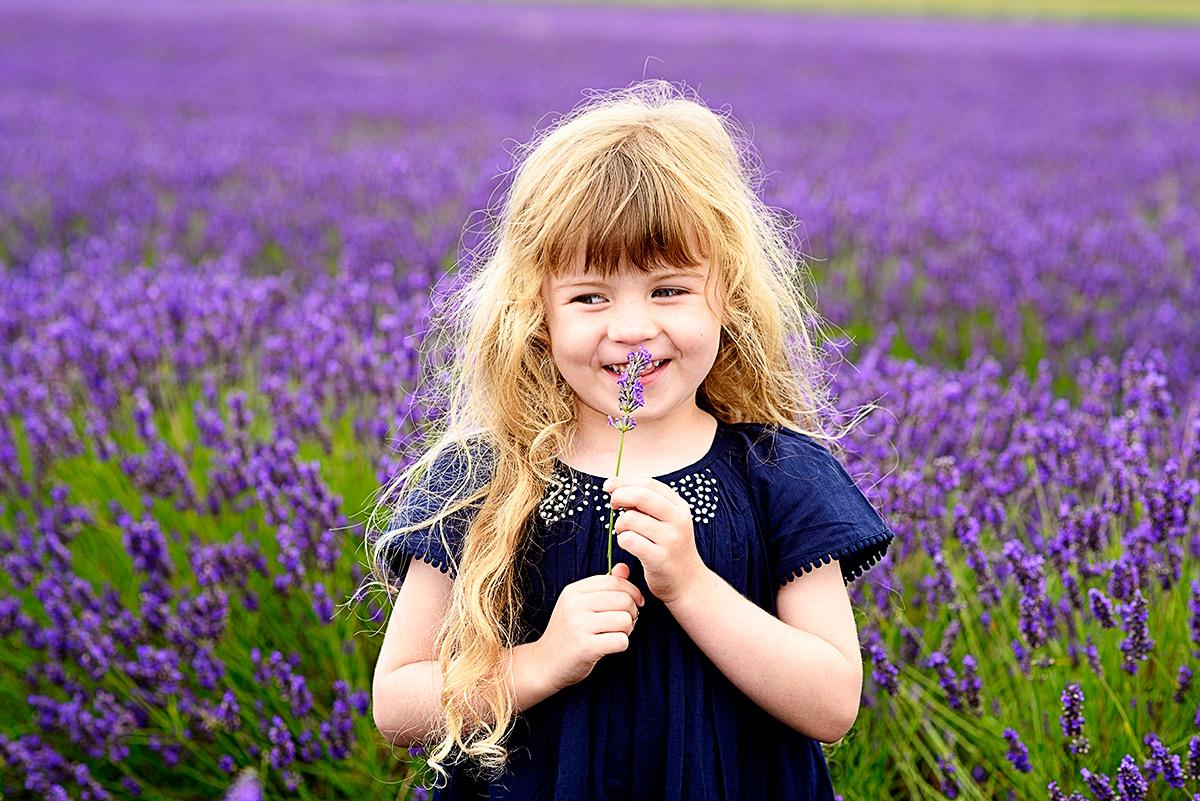 lavenderfields_15_s