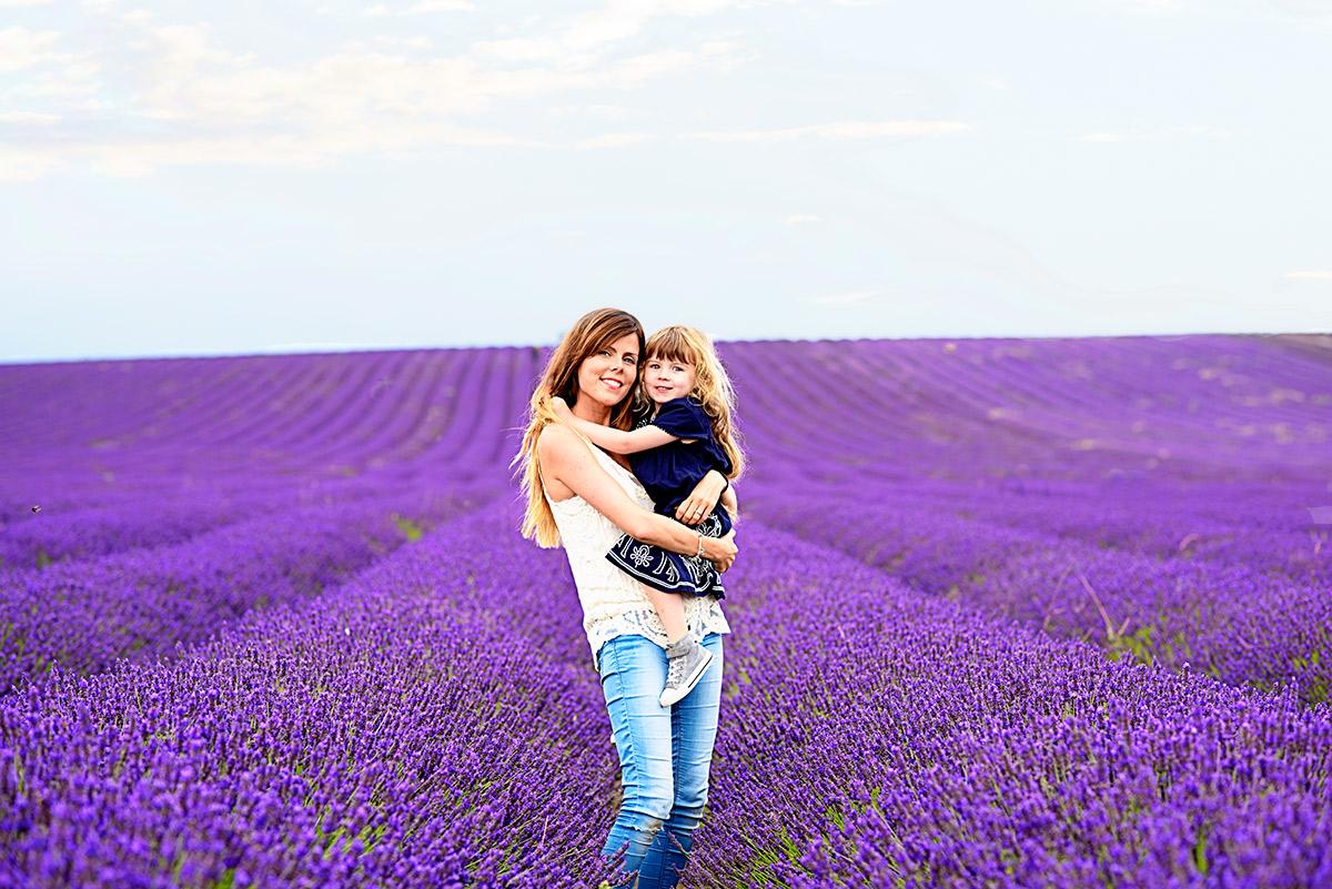 lavenderfields_15_w