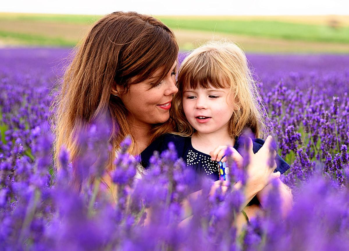 lavenderfields_15_x