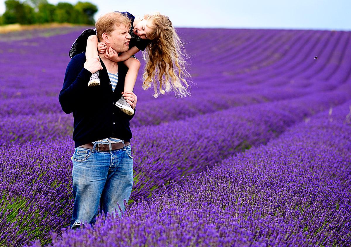 lavenderfields_15_zc