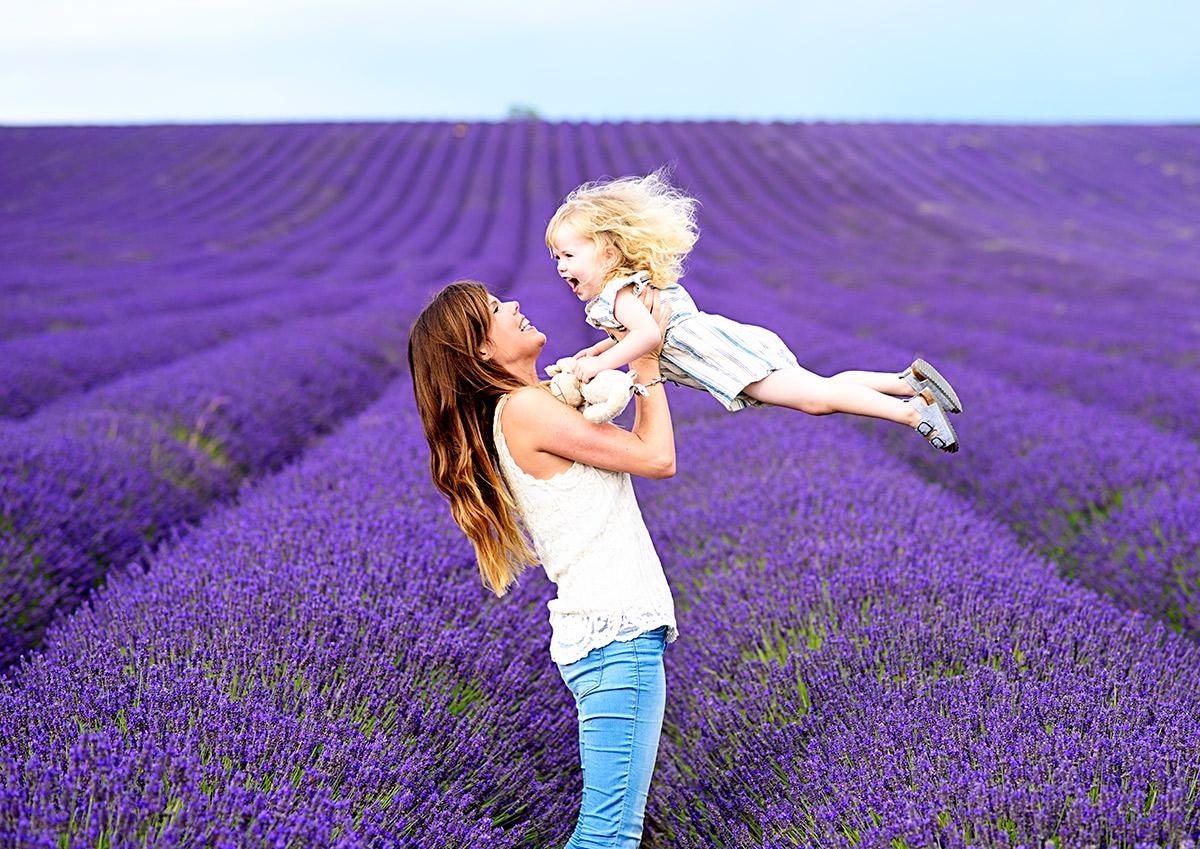lavenderfields_15_zd