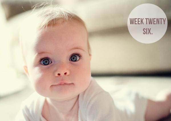 thebabydiariesweek26