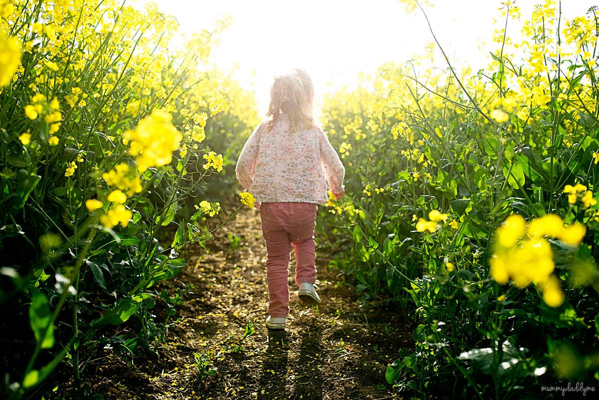 yellow rapeseed photoshoot14