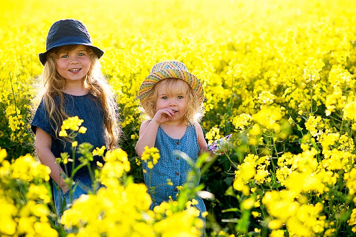 yellowfieldfunm