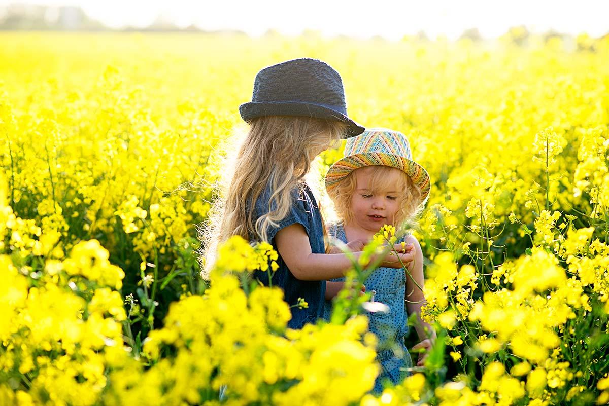 yellowfieldfunn